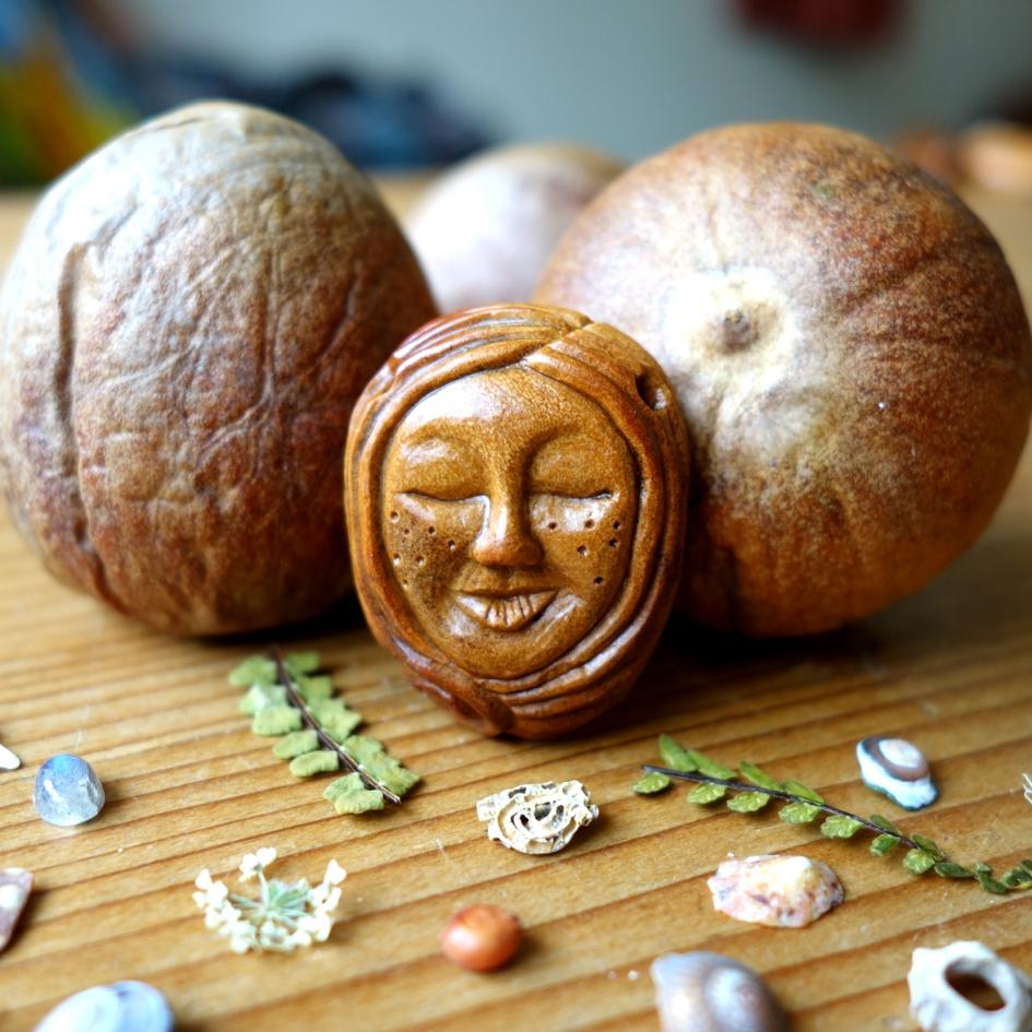 avocado stone 2